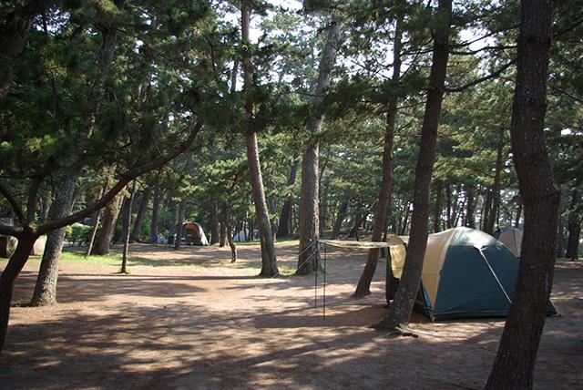 キャンプ 場 大洗